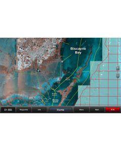 Garmin Standard Mapping - Florida One Professional microSD/SDCard